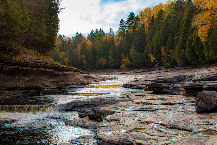 Stream flowing through rocks in forest against sky