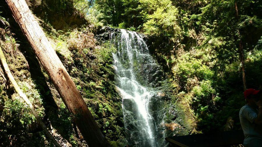 Bigbasinredwoods Trailing Hikingadventures Waterfalls California Sommergefühle