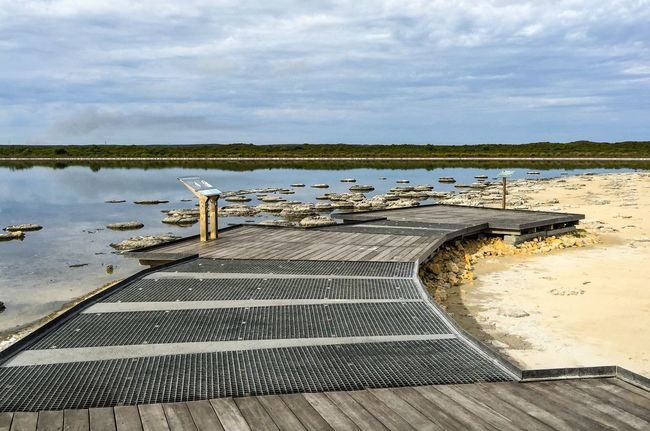 Rare Attraction: Stromatolites at Lake Thetis Unique Water Saline Nature_collection Coastal Geology Sediment Natural Phenomenon Living Marine Fossil Marine Living Rock Fossil Stromatolites Lake Western Australia Australia Nature Lake Thetis Rare Tourist Attraction  Walkway Elevated Walkway Lookout Landscape