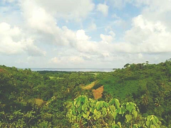 Mt.Pasngao