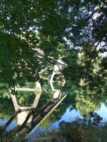 En Balade Au Bord De L'eau Pont Water Eau Beauty In Nature Fleuve Charente Fleuve Riviere River Beauty In Nature Nature