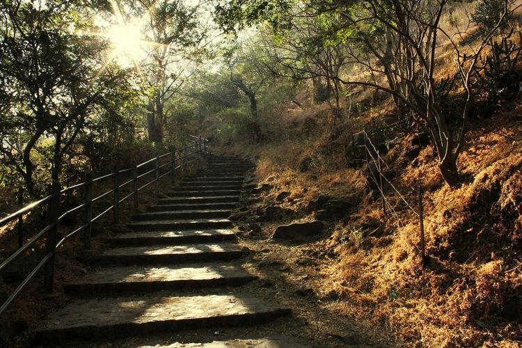 Climbing up!!! 83 steps to go!!! Walking The Stairs Pandav Leni Nature Photography Enjoying The Sights Mountain Climbing