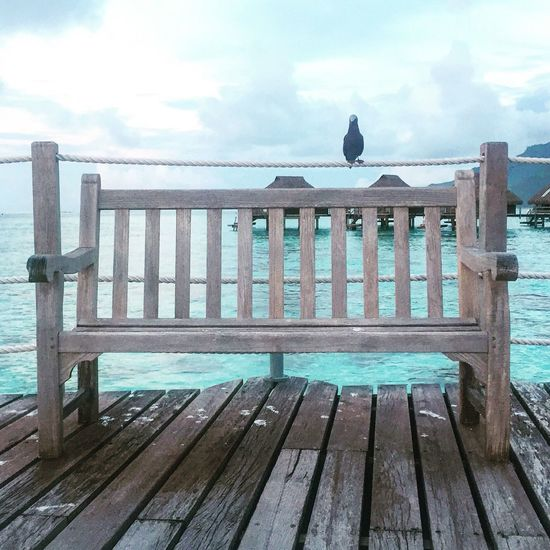 Photooftheday Bestoftheday Sunset And Clouds  Sunset Moorea Sunset Moorea French Polynesia Trip Photo Trip Bird Photography Chair Wood Ocean View Ocean Beach Beautiful Honeymoon Love Inlove Lovely Charm Water