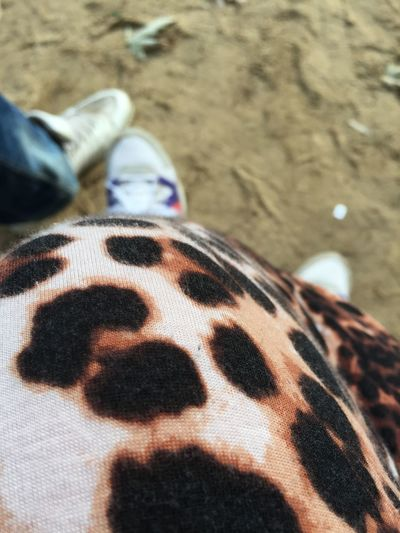 Couple Fashion Focus On Foreground Leopard Print Playground Sneakers Urban Playground
