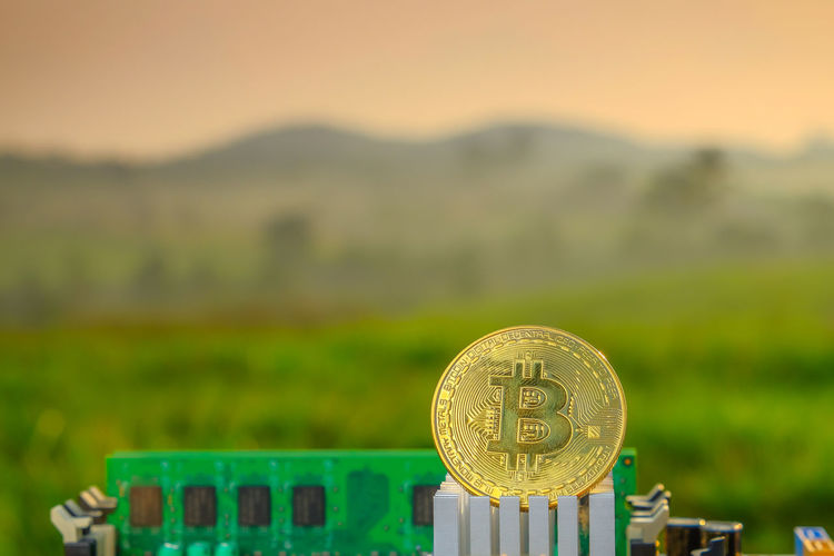 Bitcoin with a motherboard, Golden Bitcoin Cryptocurrency on computer circuit board with blurred green nature while sunrise. The concept of cryptocurrency. Blockchain technology. Business Business Finance And Industry Close-up Coin Currency Economy Field Finance Focus On Foreground Gold Colored Grass Green Color Investment Land Metal No People Number Savings Text Wealth