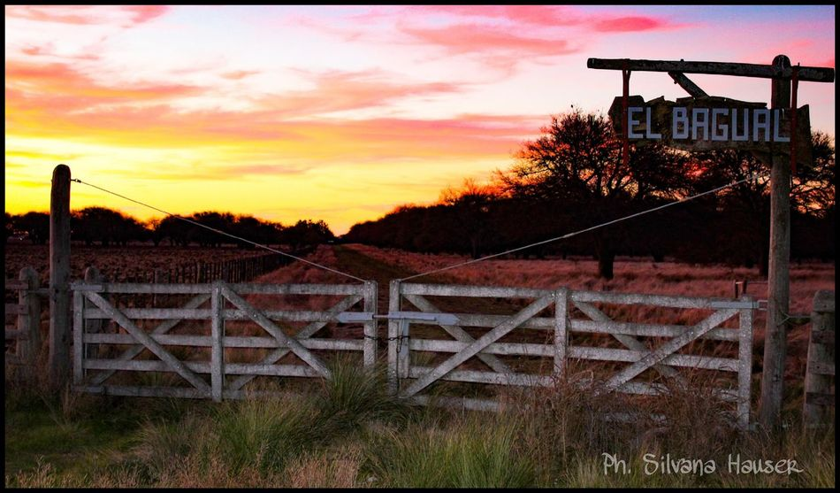 Private Private Property Eyes Nature Gate Landscape Tranquera Campo Paisaje Rural  Sunset Atardecer No People Nature Photography Nature Casual Heaven Argentina Escenas Rurales Rural Scene Tree Safety Sky Grass Cloud - Sky