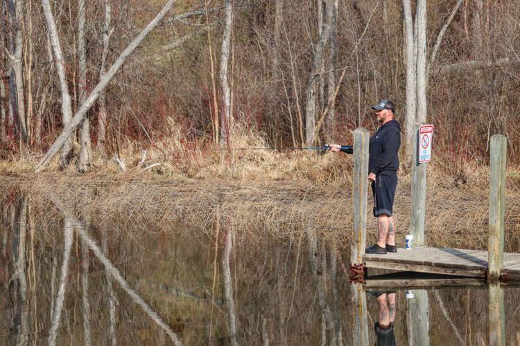 Man standing on field by lake in forest
