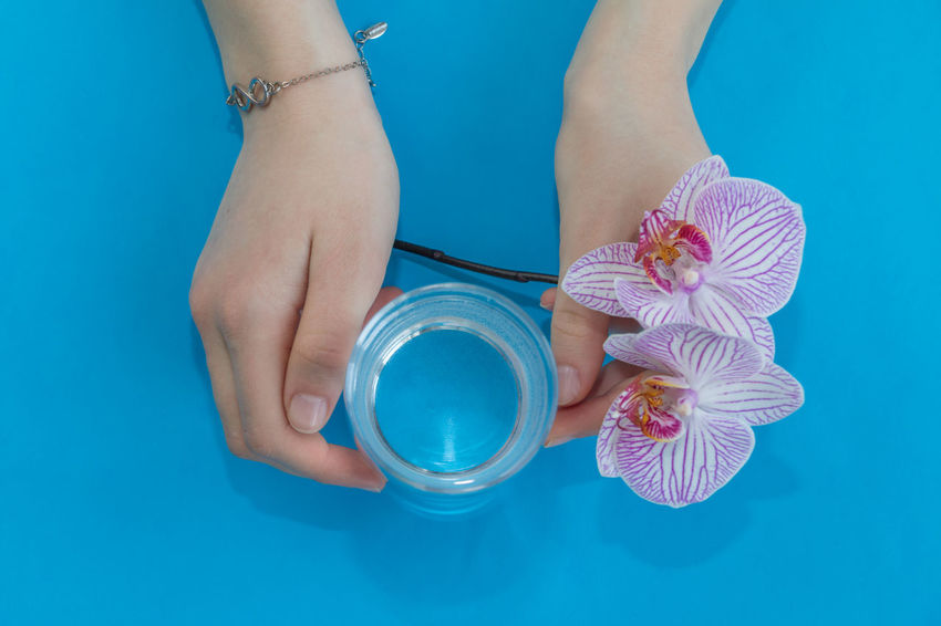 Holding water Blue Background Water Hand Glass Overhead Overhead View Flat Lay Top View Healthy Life Healthy Drinks Diet Drink Slimming Healthy Diet Health Glass Of Water Clean Water Artesian Water Minimalism Orchid Flower Girl Water Source Holding Water Artesian