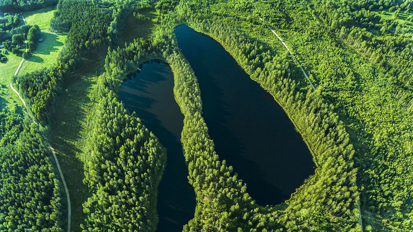 Aerial Photography Aerial View Day Dronephotography Estonia Forest Forest And Lake Fromabove Green Color High Angle View Lake Lakes  Landscape Nature Nature No People Photooftheday Tree