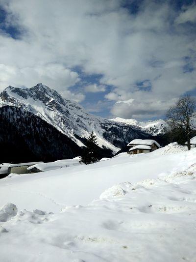 Mount Bivera Mountain Panoramic Photography Sauris