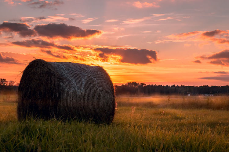 Sky Field Land Sunset Plant Landscape Scenics - Nature Hay Bale  Tranquil Scene Beauty In Nature Tranquility Cloud - Sky Grass Agriculture Nature Orange Color Environment Rural Scene No People Outdoors