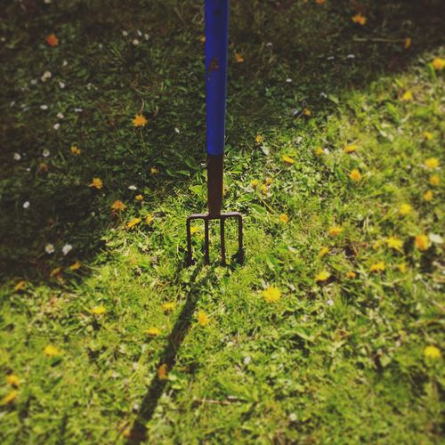 pitchfork Harvest Pitchfork Summer EyeEm Nature Lover Gardening Garden Photography Grass Exterior Design Chad Jesse Pinkman Albuquerque Nihilism Design Juliuscaesar Victorhugo Macroeconomics Cícero Siddharta Pedigree Corruption