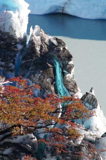Amazing Nature Colors Automn Colors, Glacier Perito Moreno Glacier, Ice Patagonia Argentina Travel