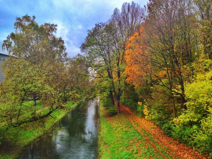 Herbstfarben Colors Herbst Landscape_Collection Nature_collection