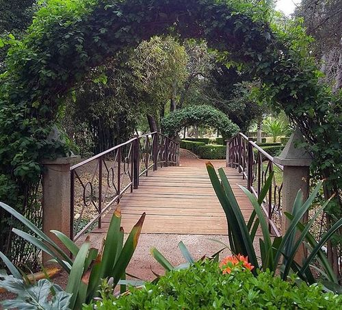 Garden Bridge Littlebridge Flowers Jardinbotanico Jardinbotanique Beautifulday Nature Relaxing Instaphoto Botanicgarden Place