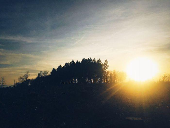 •light•