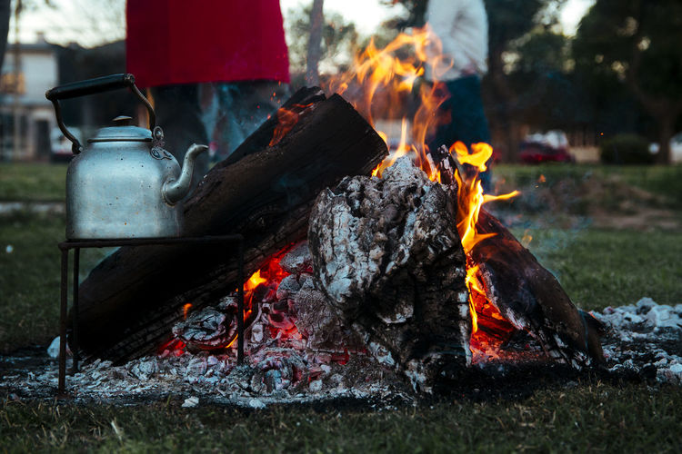 Fire Wood Fire Firewood colour of life Wood Close-up Close Up Burning Fire - Natural Phenomenon Heat - Temperature Flame Nature Day Barbecue Bonfire Outdoors Log Grass Wood - Material Camping Preparation  Meat Barbecue Grill Kitchen Utensil Food Campfire Preparing Food