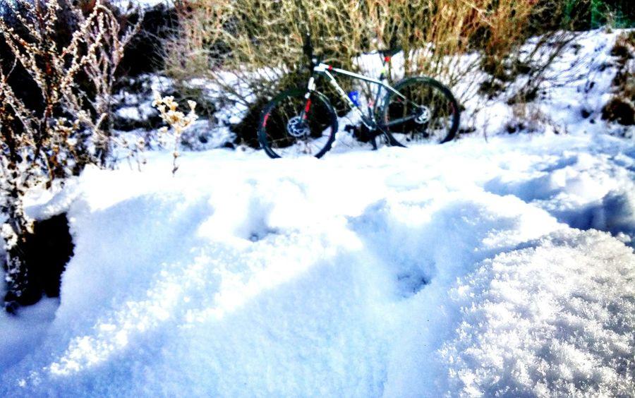 Winter Snow MTB Biking Beskidżywiecki Žywiec Fun Lake żywieckie Lgg3shot LGg3photography LGG3 Bike Ride Focus Mtb Focus MTB