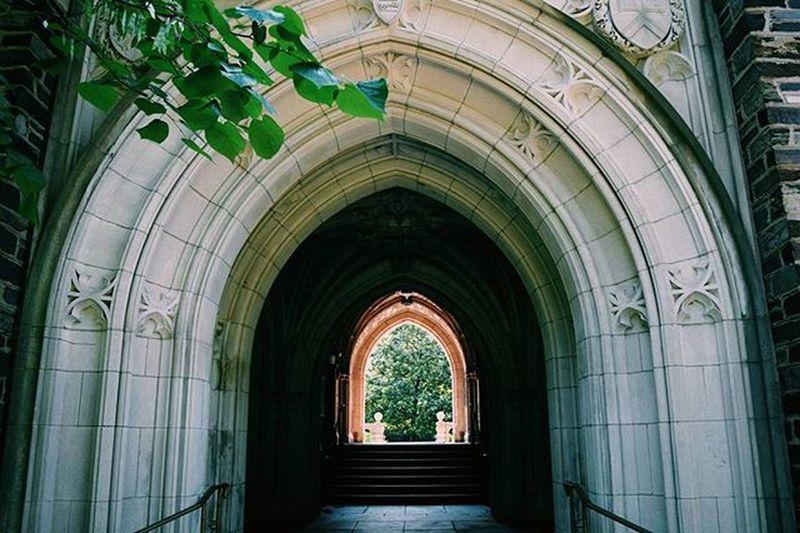 Princeton Arch Architecture Newjersey College IvyLeague Lighting Brick Stone Trees Nature Vscophile Vsco_hub Vscocam Vscolife Vscolove VSCO