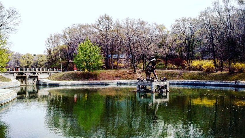 Harbin China Park Lake Green Tree Peaceful Plant Statue 中国 哈尔滨 湖水 树 植物 公园 绿 宁静 雕塑 록색 공원 호수 식물 나무 중국 할빈