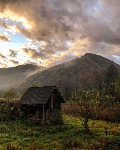 Old aboned hut
