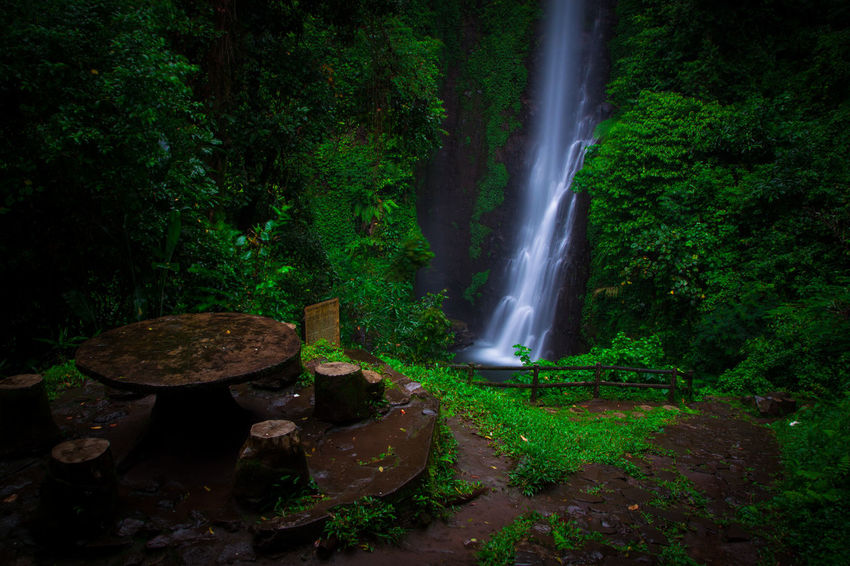 putuk truno Longexposures Long Exposure SaveNature Gogreen Green Landscape Landscapephotography Putuktruno Putuktrunowaterfall Nature Green Color Beauty In Nature Water Motion Outdoors Agriculture No People Waterfall Freshness Irrigation Equipment Scenics Tree