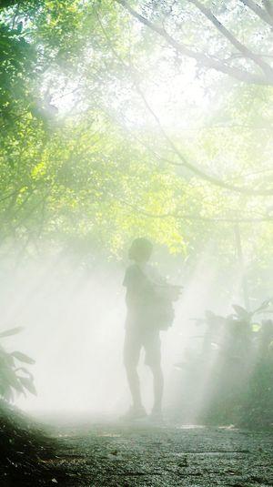 Full Length Fog Tree Men Grass