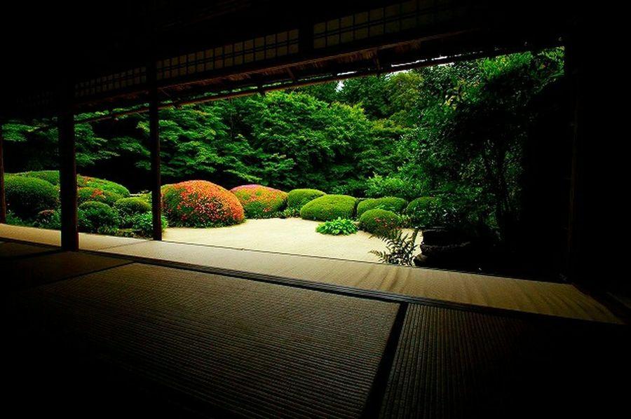 詩仙堂 Taking Photos Relaxing Hello World Traveling Enjoying Life Green Temple Kyoto Photos Around You