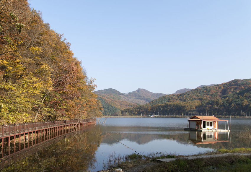 autumn lake view of Mungwang Lake in Goesan, Chungbuk, South Korea Afternoon Autumn Afternoon Nature Afternoon In Autumn Architecture Autumn Autumn Lake Autumn Lakeside Beauty In Nature Built Structure Clear Sky Day Fall Lake Lake In Autumn Lakeside Lakeside In Autumn Mountain Mountain Range Nature No People Outdoors Reflection Scenics Sky Tranquil Scene Tranquility Tree Water