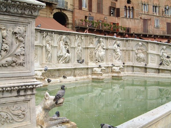 Fountain, Piazza del Campo Animal Representation Animal Themes Animals In The Wild Architecture Art Art And Craft Birds Built Structure Carving - Craft Product Composition Creativity Famous Place Fountain Full Frame History Human Representation Incidental People Italy Piazza Del Campo Pidgeons S Sculpture Statue Travel Destinations Water