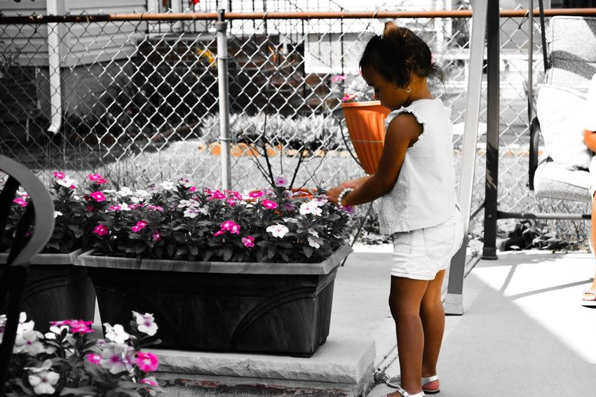 Pickingflowers Children My Princess Rookiephotographer