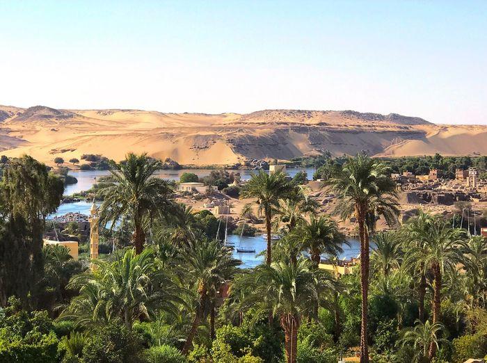 Upperegypt Aswan, Egypt Nile River