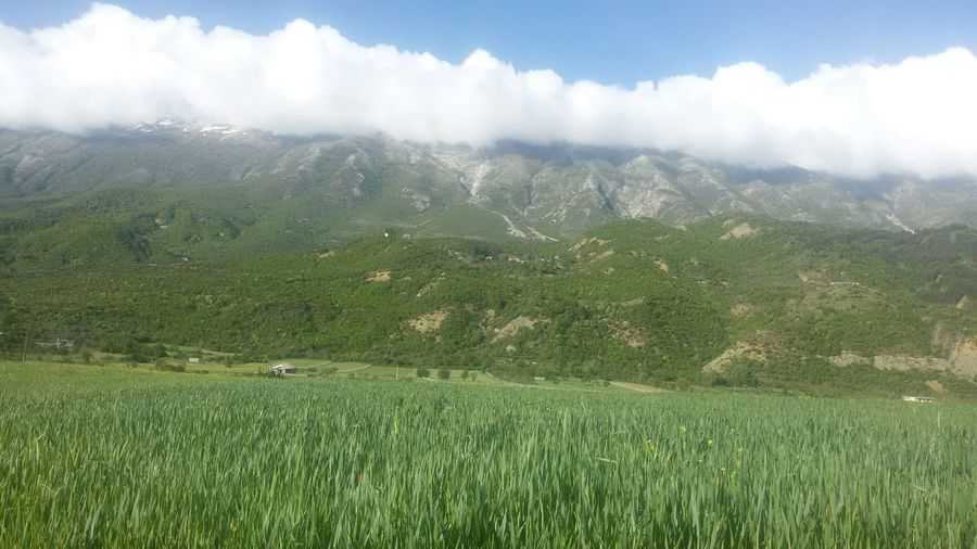 Fifty Shades Of Green Sky Clouds Mountain Grassfield Permet Permet Albania Albania 👍