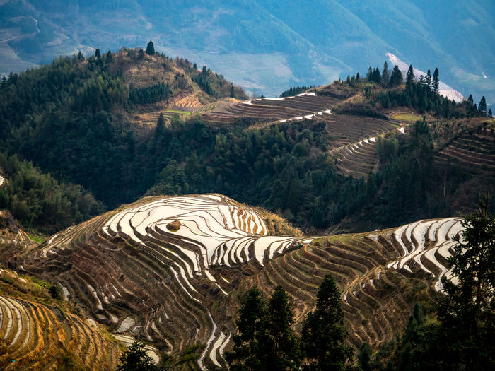 China Day Green Landscape Landscapes Layers Nature Outdoors Reflection Rice Scenics Terraced Field Terraces Travel Travel Photography