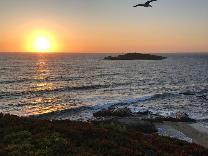 Porto Covo - Ilha dos Pesegueiros Landscape #Nature #photography Portugal Sunset Water Sky Beauty In Nature Scenics - Nature Sea EyeEmNewHere Tranquility Orange Color Tranquil Scene Beach Horizon Over Water Nature Sun Sunlight Idyllic Outdoors Land Bird No People Horizon EyeEmNewHere