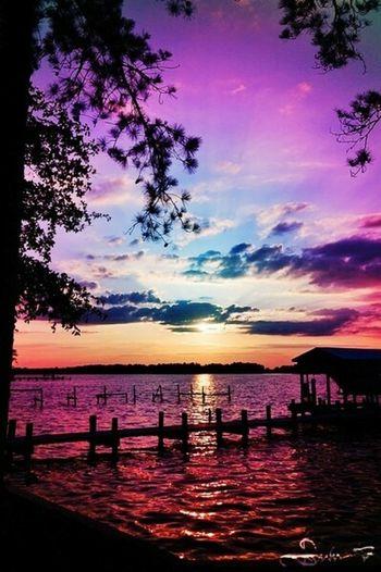 Ağacı Manzara Rengarenk Parlak Pembe Gökyüzü❄⛄🎑 Mavi Göl Deniz Okyanus Cit