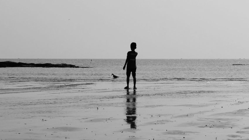 Sea Water Beach Sand Standing Nature Waves, Ocean, Nature Seascape People Sea And Sky Seaside Outdoors Day Boy Seagull Little Boy GH4 China Photos