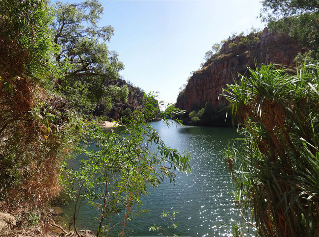 Butterfly Gorge, Nitmiluk National Park, Katherine, Northern Territory, Australia Australia Australian Australian Landscape Kakadu National Park Katherine Katherine Gorge Katherine NT Australia Nitmiluk National Park Northern Territory Beauty In Nature Butterfly Gorge Day Forest Green Color Growth Katherine National Park Land Nature Nitmiluk No People Non-urban Scene Outdoors Plant River Scenics - Nature Sky Tranquil Scene Tranquility Travel Tree Water