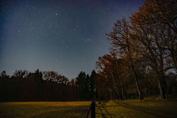 Starry Night Starry Sky Star Stars Landscape Nature Photography Nature_collection Nature EyeEm Nature Lover EyeEm Best Shots Brandenburg Under The Milky Way The Countryside At Night
