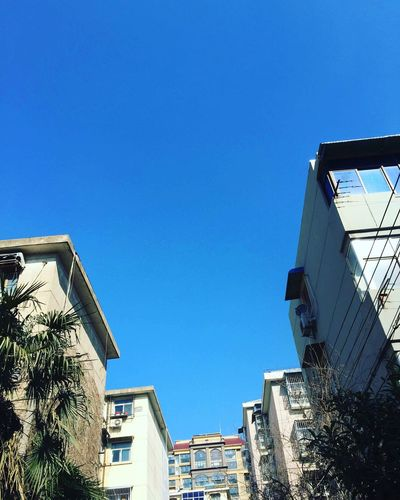 Building Exterior Architecture Built Structure Low Angle View Clear Sky Blue No People Building Residential Building Outdoors City Day Modern Tree Sky Winter Sunlight Clear Sky Low Angle View Architecture