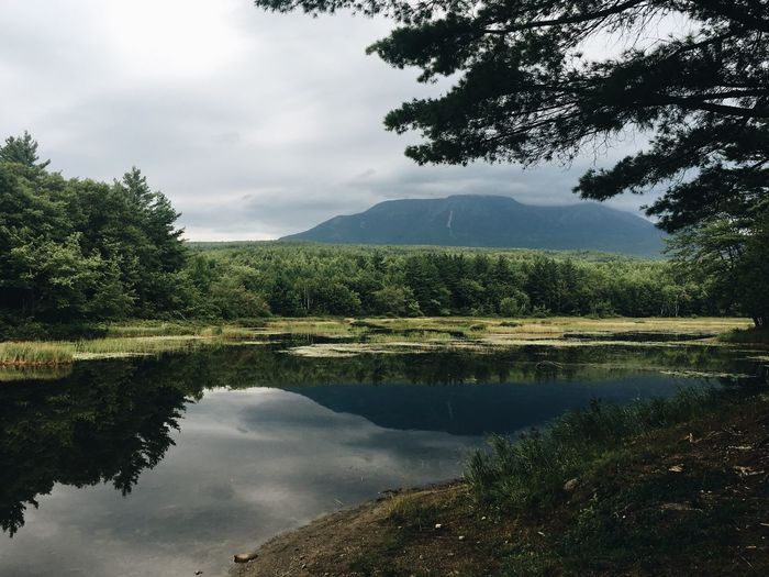 Katahdin Reflection Lake Tree Mountain Tranquil Scene Sky Scenics Tranquility Nature No People Standing Water Beauty In Nature Outdoors Day Waterfront Cloud - Sky Mountain Range Growth Appalachian Trail Katahdin Thru Hiking Peace Penobscot Summer Summertime