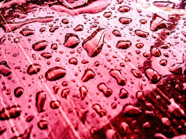 หยดน้ำ Water Red Backgrounds Full Frame Microscope Slide Pink Color Close-up Bubble Wand Water Drop Drop Human Blood Carbonated Web Car Wash Soap Sud Glass Tonic Water Bubble Alcoholic Drink Dissolving Cleaning Sponge RainDrop Detail Droplet Dew Office Block Dripping