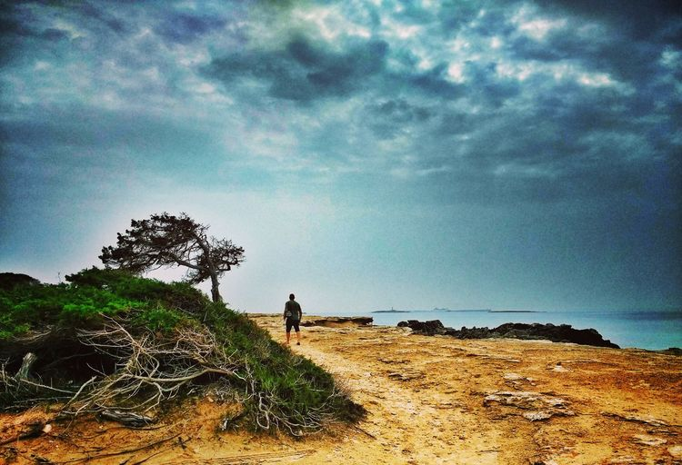 Sky Tree Cloud - Sky Beauty In Nature Nature One Person Outdoors Men One Man Only Beach Satrinxa Ibiza Taking Photos Cloudy Skies Vacations Nature Beauty In Nature Enjoying Life Holiday Breathing Space