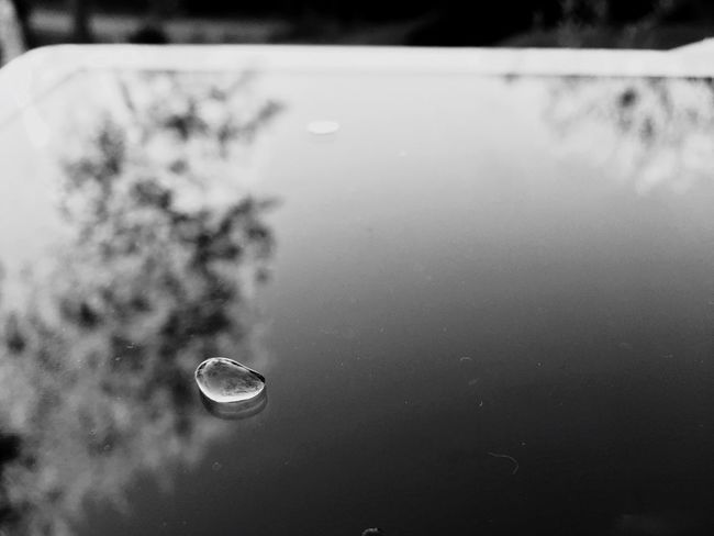B&w Water Drops Outdoors Check This Out Taking Photos Enjoying Life
