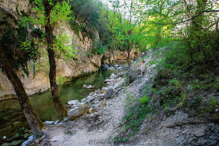 Beauty In Nature Canon Day Eos5d Forest Frasassi Caves Genga Green Color Italian Place Landscape March Mountain Nature No People Outdoors River Rock - Object Scenics Sky Tempio Del Valadier Tranquil Scene Tranquility Tree Water Waterfall