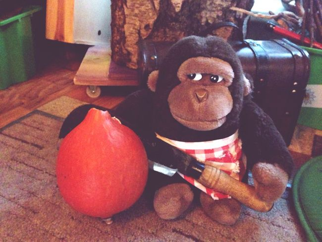 How You Celebrate Holidays Alfonso the Gorilla celebrates Halloween with his cool Machete & a Pumpkin