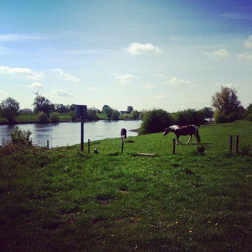 Arnhem Velp Ijssel