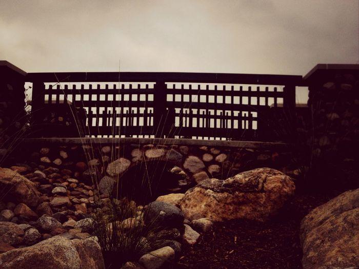 Bridge Pecae Serenity Beauty