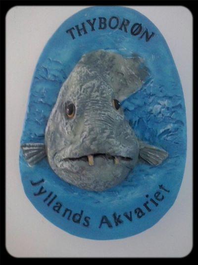 Thyboron Fish