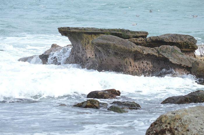 Ocean Rock Pacific Pacific Ocean Sea Seaside San Diego California Water WestCoast La Jolla Cove Seafoam Rocks La Jolla